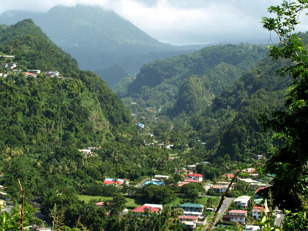 Dominica Valley Djungle