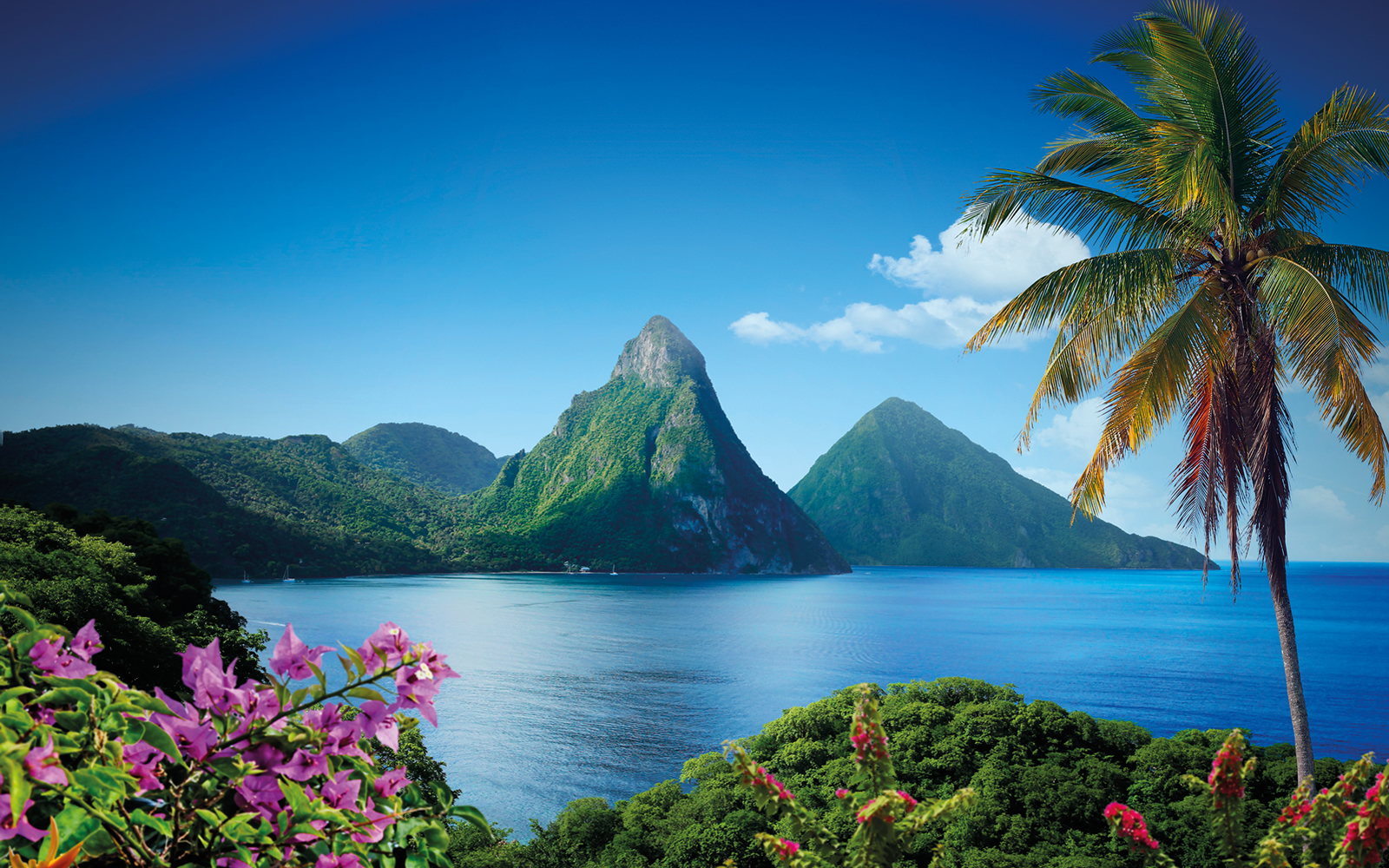 Pitons Saint Lucia anchorage